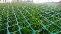 Zatravňovací rohož zelená GrassRoll Standard 2x30m včetně U-Pinů