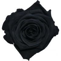 Dárková stabilizovaná růže - černá