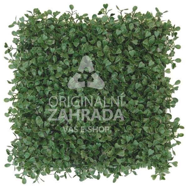 BUXUS GREEN, 4x dílec 50 x 50 (Umělý živý plot - Zimostráz tmavě zelený)