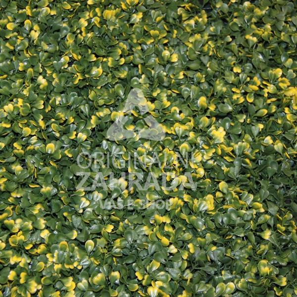 BUXUS VG, 4x dílec 50 x 50 (Umělý živý plot - Žlutě panašovaný zimostráz)