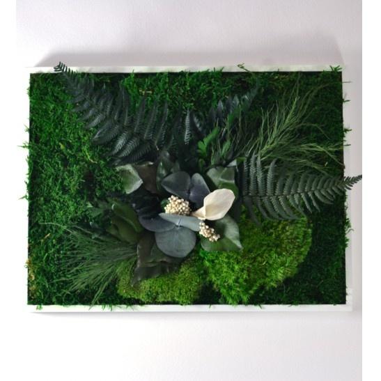 Adam (Obraz z mechu a stabilizovaných rostlin)