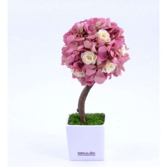 Stromeček hortenzie a růže II (Originální stromeček ze stabilizovaných rostlin)