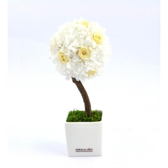 Stromeček hortenzie a růže III (Originální stromeček ze stabilizovaných rostlin)
