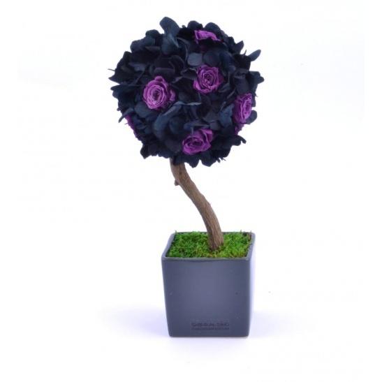 Stromeček hortenzie a růže IV (Originální stromeček ze stabilizovaných rostlin)