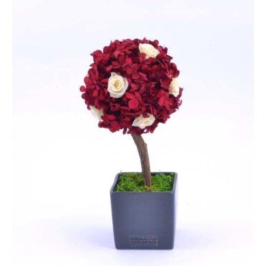 Stromeček hortenzie a růže V (Originální stromeček ze stabilizovaných rostlin)