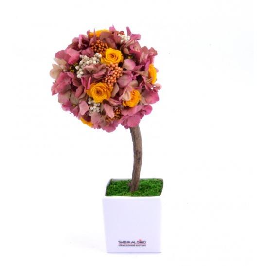 Stromeček hortenzie a růže VII (Originální stromeček ze stabilizovaných rostlin)