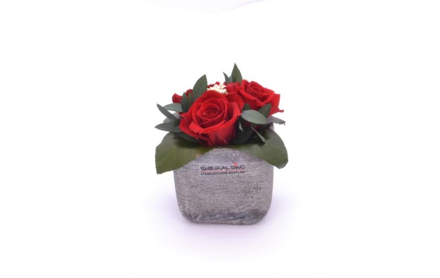 Ina (Aranže tří hlav růží v keramickém obalu)