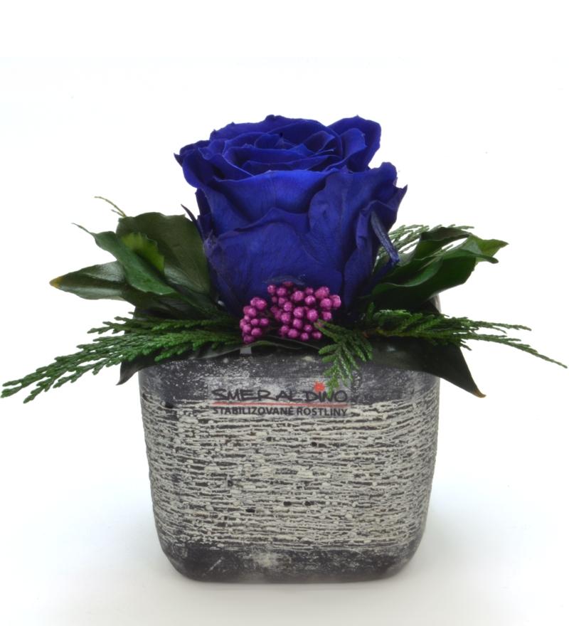 Sára DARK (Aranže jedné hlavy růže v keramickém obalu)