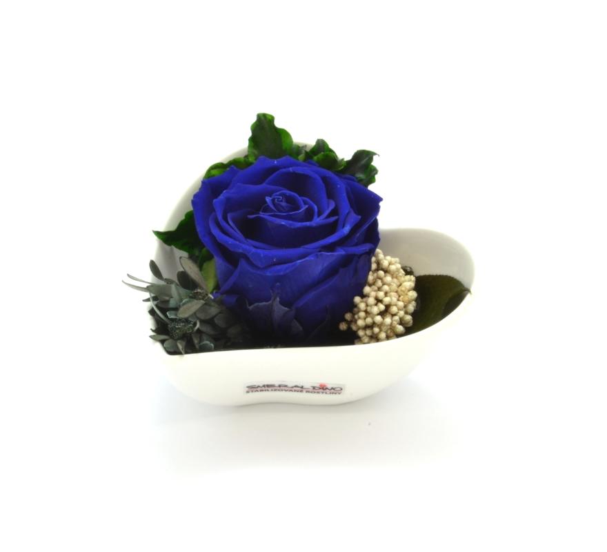 Lena (Stabilizovaná růže v květináčku ve tvaru srdce)