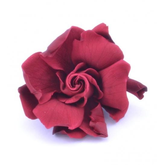 Gardenia 4 ks