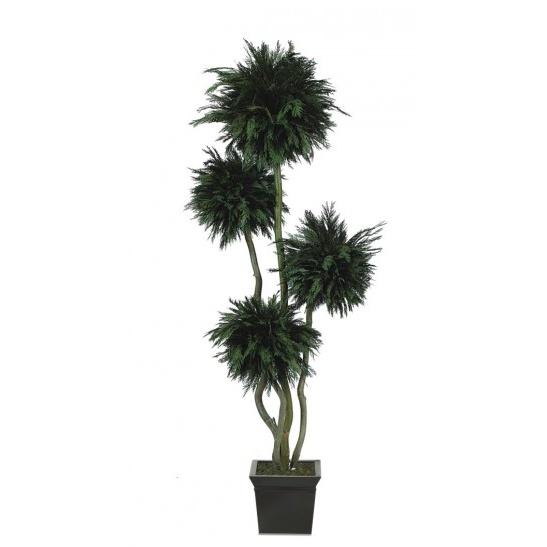 Thuja 4 balls tree