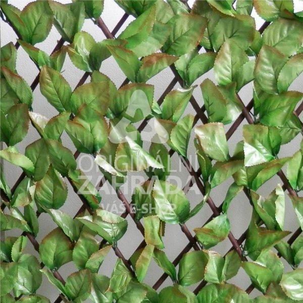 FAGUS EXT, rozměr - 1,0x2,0 m (Umělý živý plot - listy buku, měnitelná průhlednost plotu)